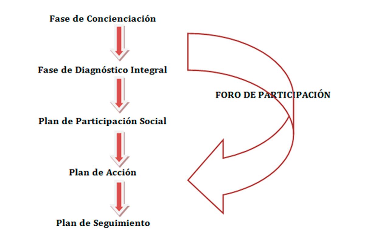 Imagen descriptiva de las fases de la Agenda 21