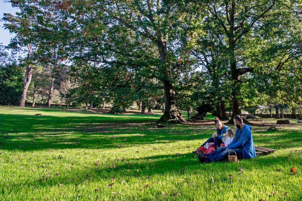Imagen familia sentada en el parque