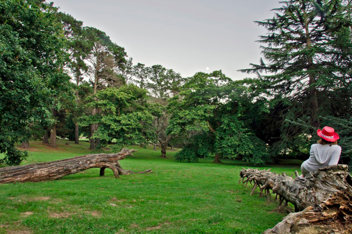 Imagen de parque en Villaescusa